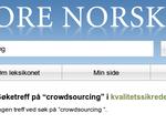 Store Norske Leksikon / Norsk Nettleksikon